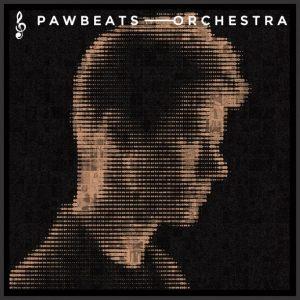 """Pawbeats """"Orchestra"""""""